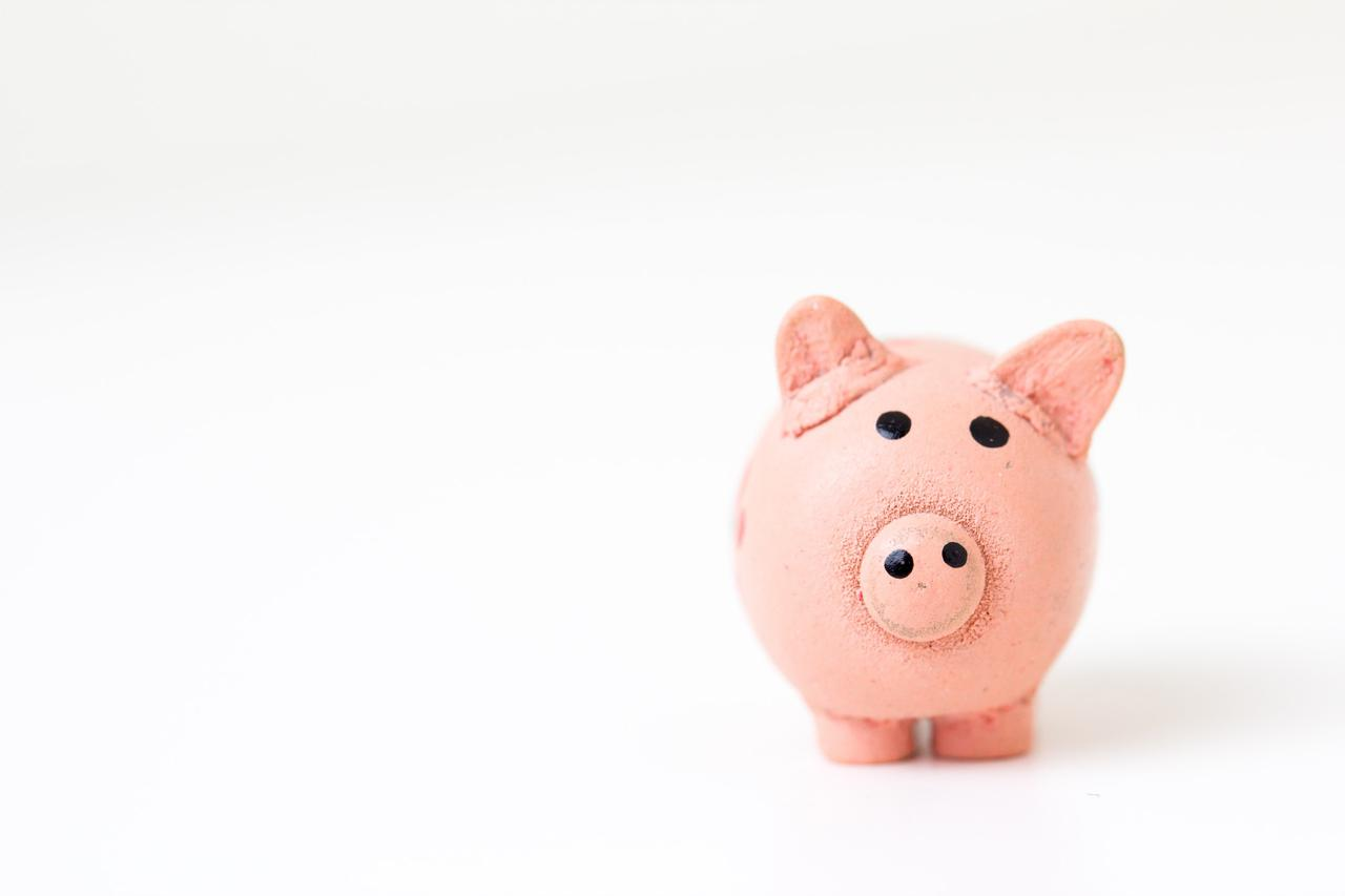 At Leonard Tam, our outsourced CFO services will help you maximize your business's piggy bank.