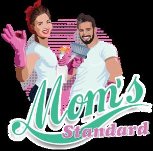 27s Standard logo