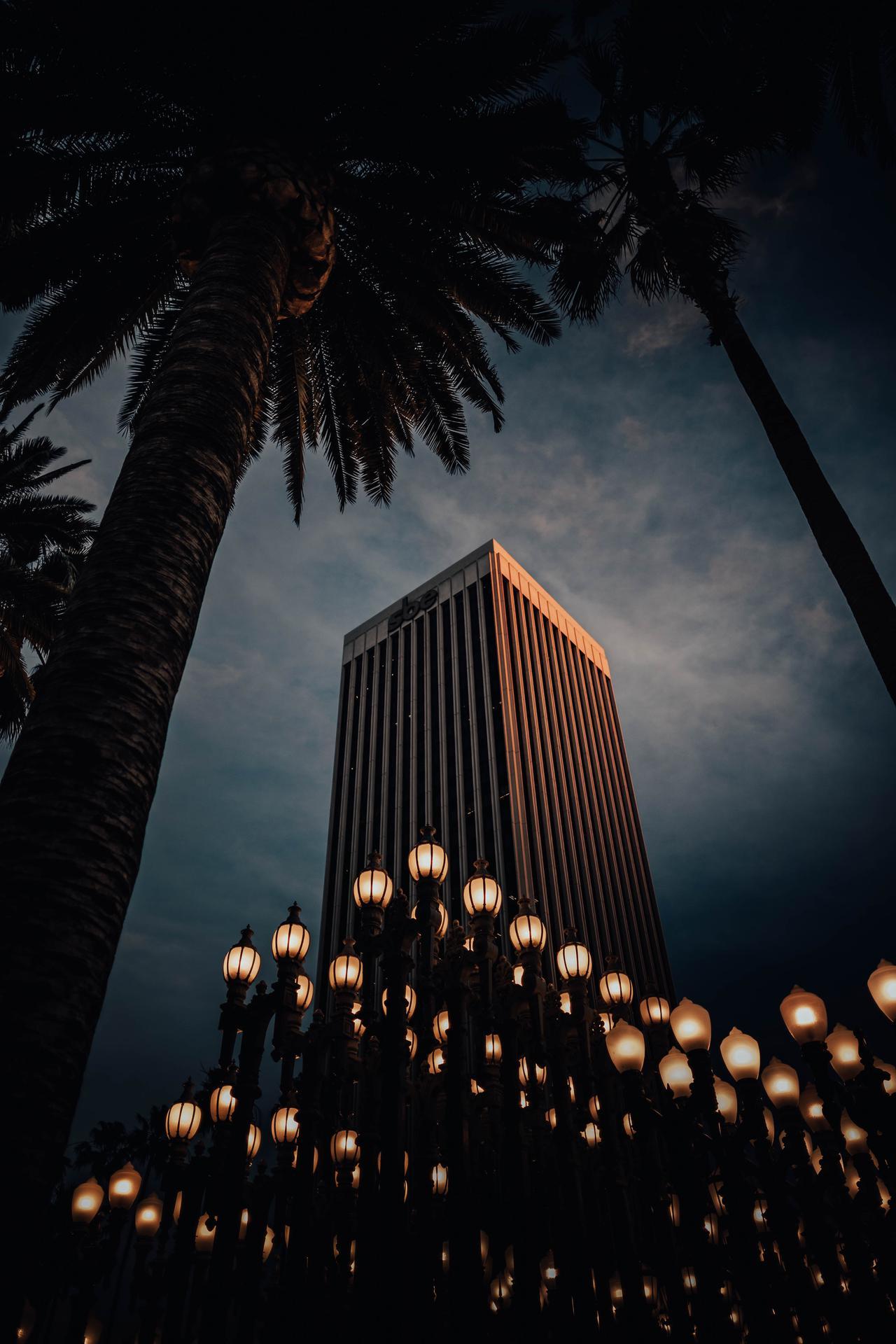 high-rise-building-near-lighted-lamp-posts-2618694.jpg