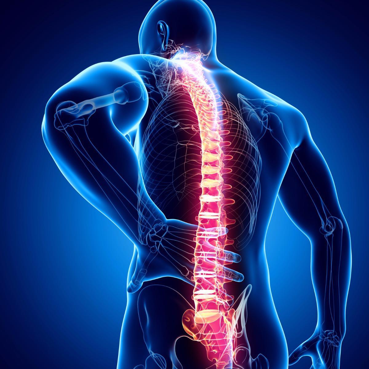 spinalpain.jpg