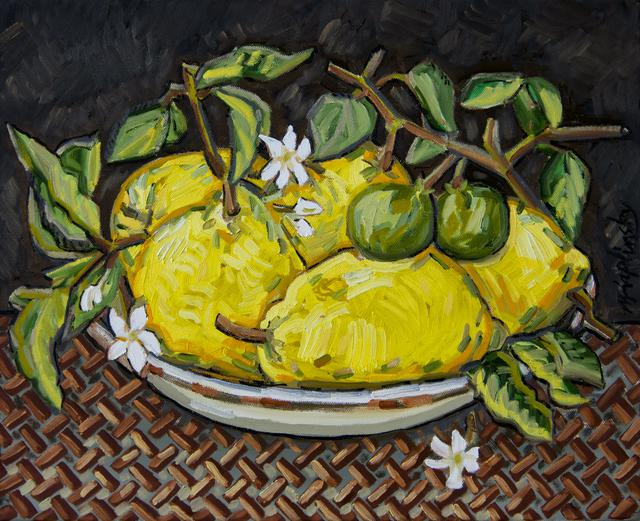 Citrus Flowers oil on canvas art piece by Matt Kaplinsky 16x20