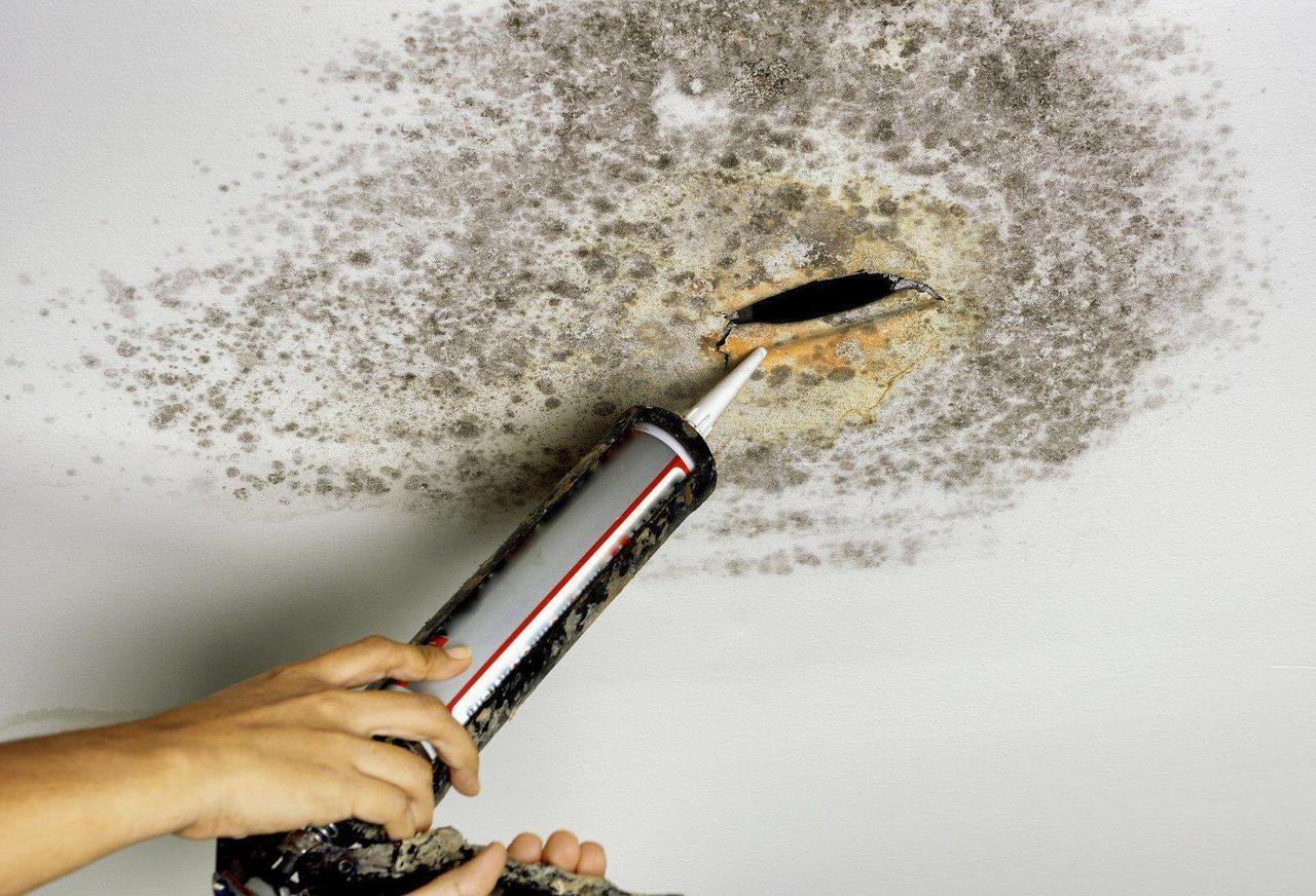this is a photo of a client benefiting from mold remediation