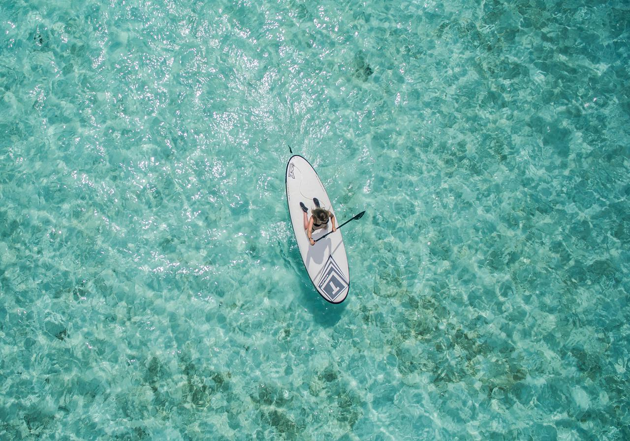 beach bright fun ocean