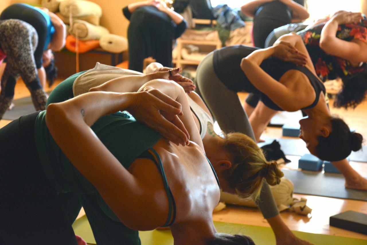 Jivamukti Yoga, Spiritual Warrior, Supersoul & Strong Vinyasa