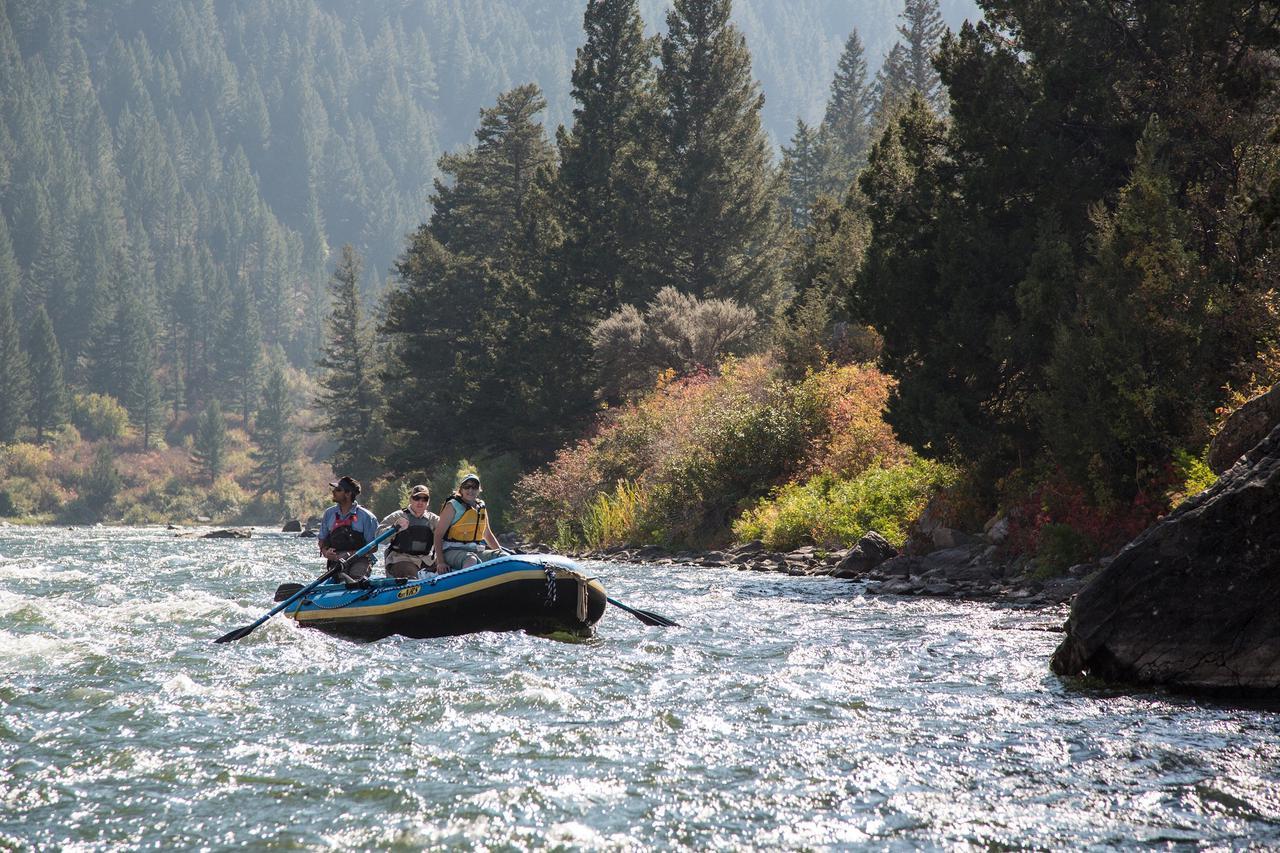 ad8f rafting
